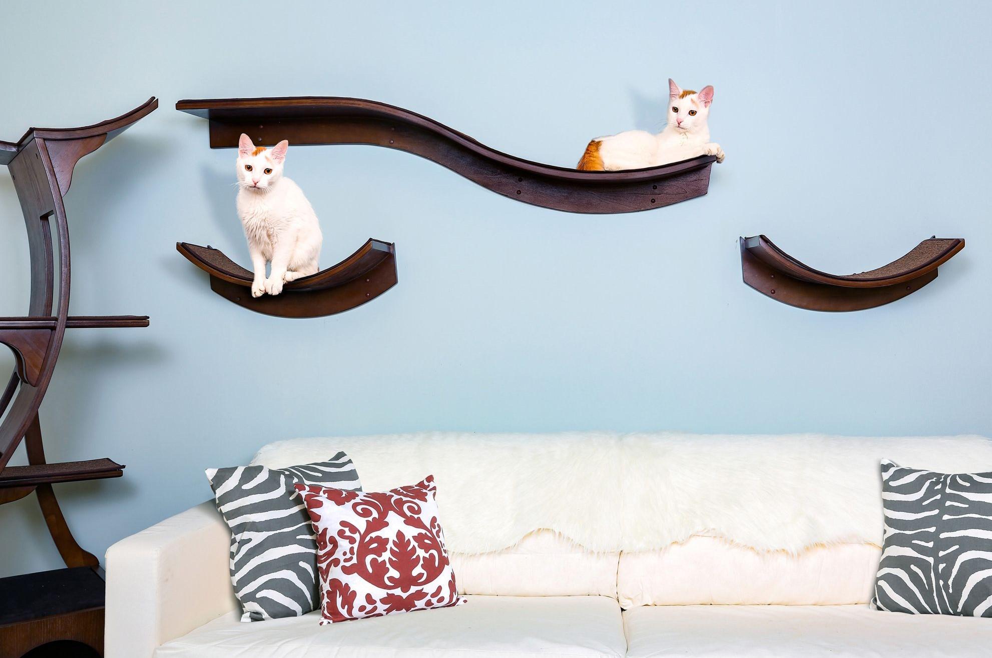 cat shelves from The Refined Feline